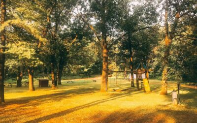 Camping in Pepin County